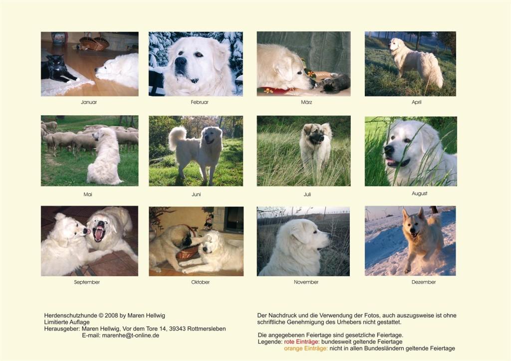 Kalender Herdenschutzhunde 2008 - Letzte Seite - Übersicht aller Bilder